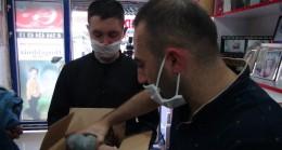 Yaralı kuşa Mehmetçik yardım elini uzattı