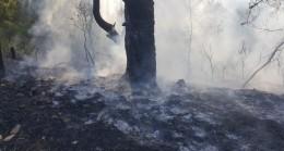 Antalya'da 2 dönüm makilik alan yandı