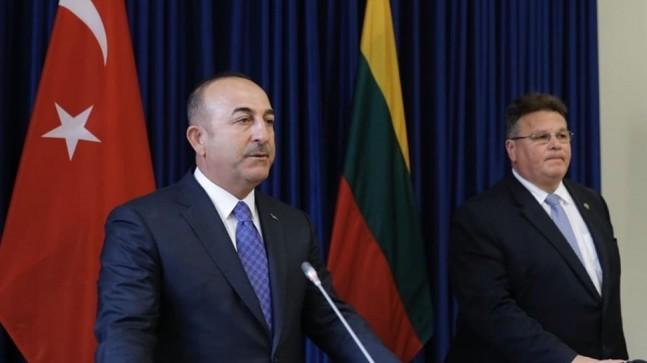 Dışişleri Bakanı Çavuşoğlu ve Litvanyalı mevkidaşından ortak basın açıklaması