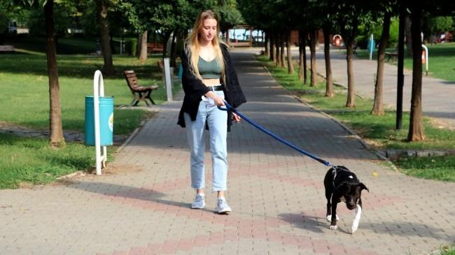 Darp edilen Ukraynalı genç kızı kurtarmak isterken bıçaklandı