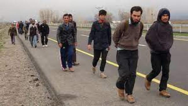 BM Uluslararası Göç Örgütü yöneticisi: 'Afganistan'dan Türkiye'ye büyük bir göçmen akını gerçekleşmedi'